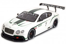BENTLEY Continental GT3 Concept Car Salon Paris 2012 - True Scale Escala 1:18 (TSM131804R)