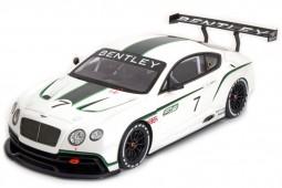 BENTLEY Continental GT3 Concept Car Salon Paris 2012 - True Scale Scale 1:18 (TSM131804R)