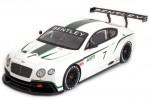 BENTLEY Continental GT3 Concept Car Salon Paris 2012 - True Scale Escala 1:18 (TSM131804R)